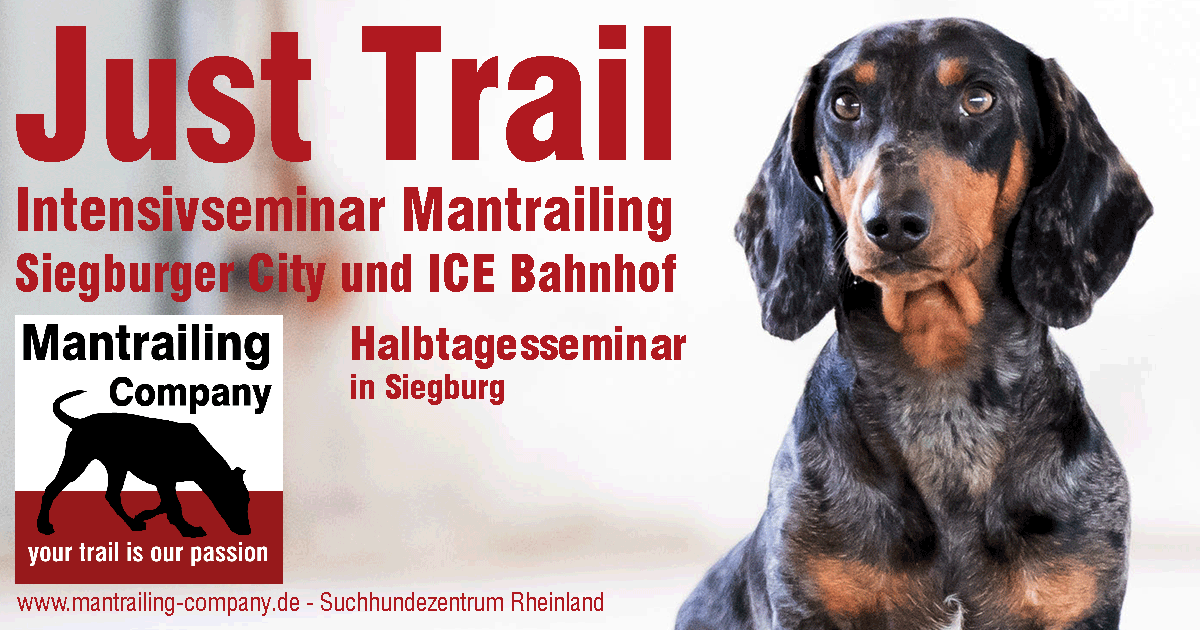 JustTrail - Mantrailing pur! (Nachmittag)