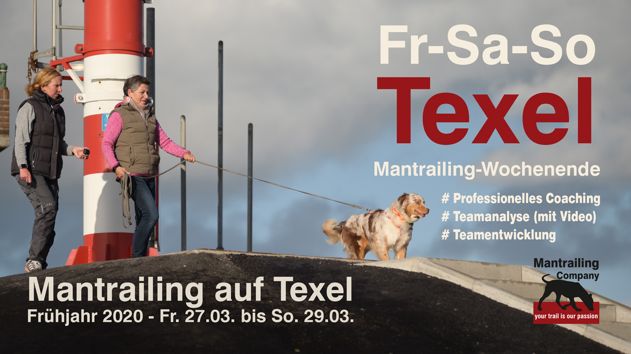 Mantrailing Wochenende - boost your skills - Texel
