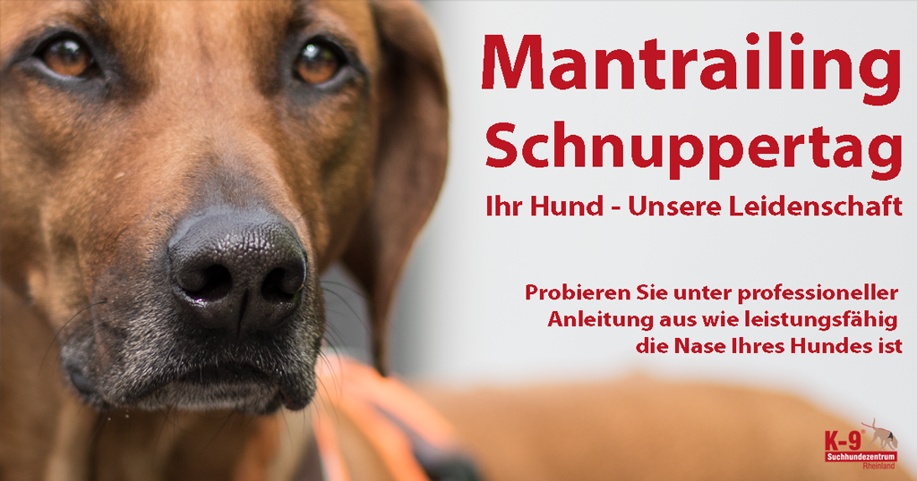 Schnuppertag-2016