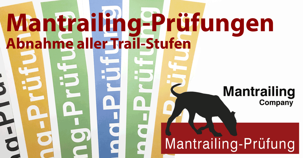 Prüfungstag - Basic 1 only - 12/18